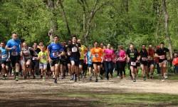 Održano Otvoreno prvenstvo Istre u krosu