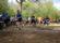 Najava utrka Istarske zimske lige u trčanju